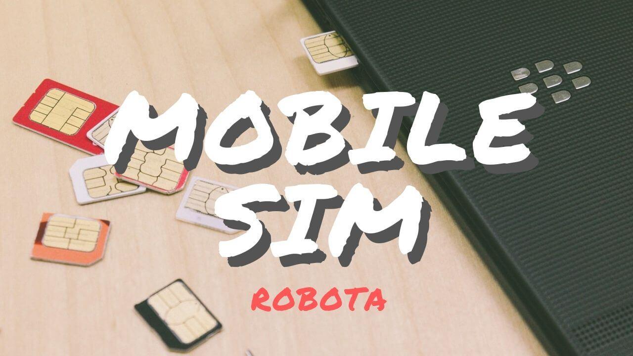 格安SIMのカテゴリページのサムネイル